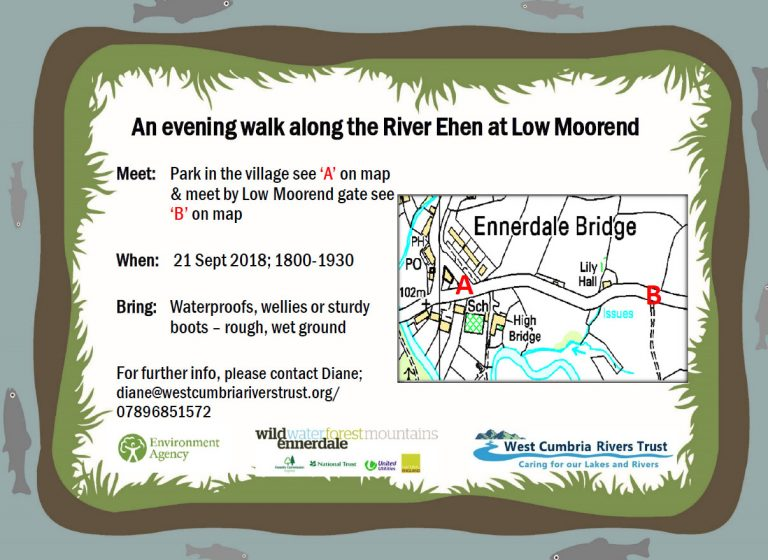 Join us for an evening walk at Low Moorend 6pm til 7:30pm , meet at Low Moorend gate at 6pm on the 21st September.
