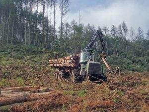 Forwarding felled timber on Crag